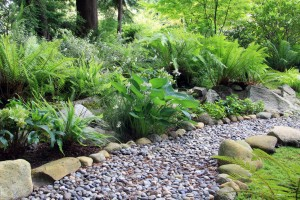 Utilising the shady part of your garden can be tricky